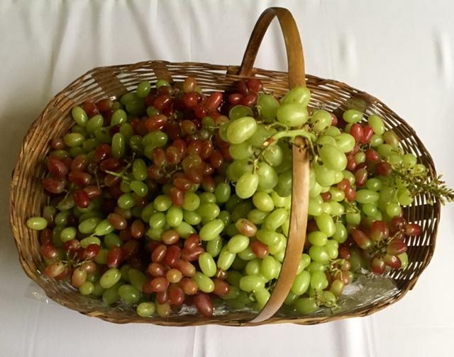 As frutas são importantes no cardápio detox por serem ricas em fibras, vitaminas e antioxidantes